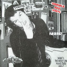 "Various ""Young Raw Sounds UK (Rare Punk Vol 1)"""