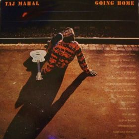 "Taj Mahal ""Going Home"""
