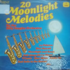 The Billy Vaughn Orchestra – 20 Moonlight Melodies